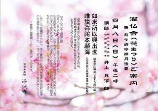20180408 花まつり HP.jpg
